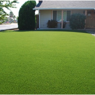 Synthetic Grass War: The Pros And Cons Of Fake Grass
