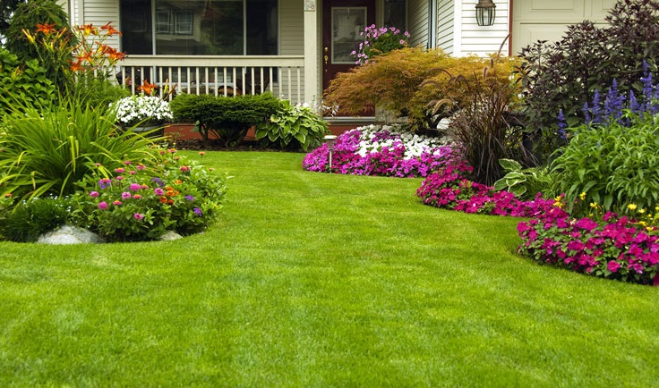 Lawn Care and Landscaping Greenbrier Arkansas